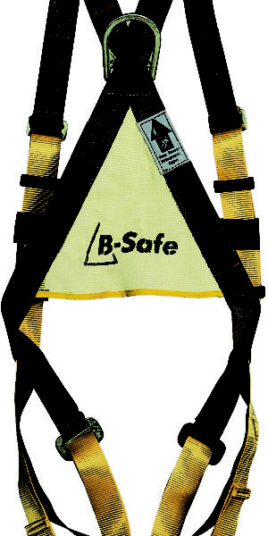 Safety Harness with Lanyard